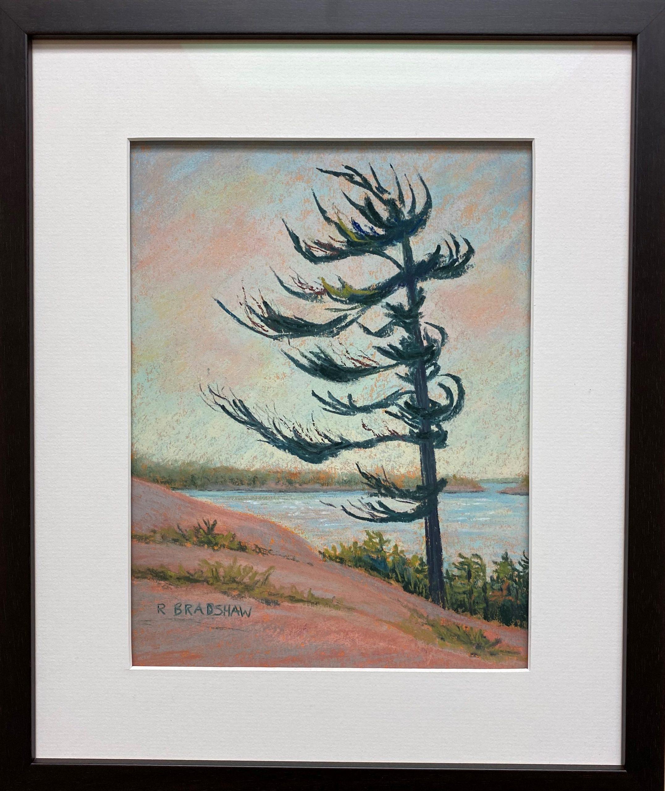 An image of Renata Bradshaw pastel landscape painting Windswept 2